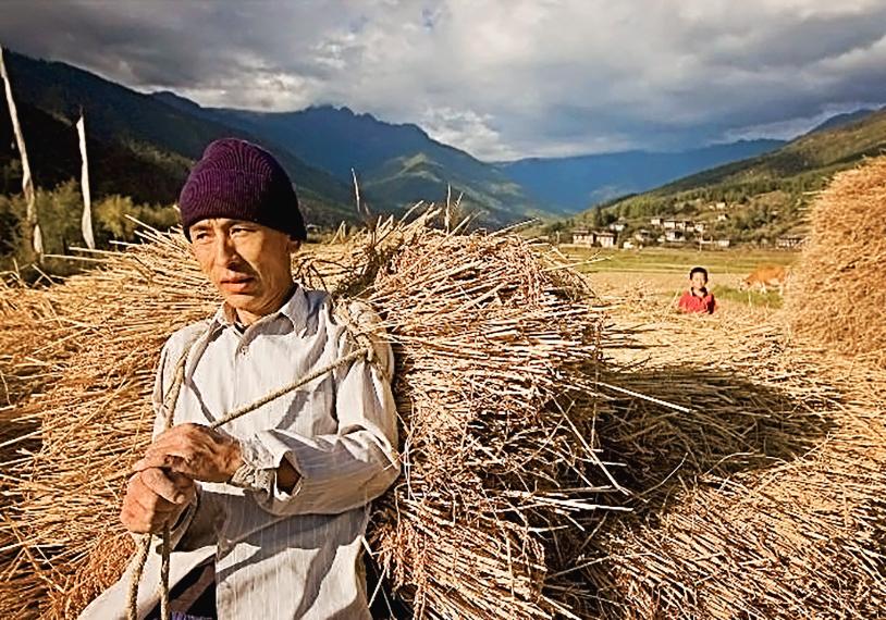 Un paysan dans la région de Paro